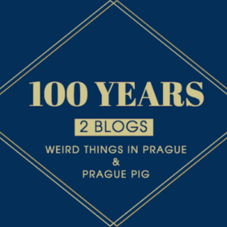 """100 Years, 2 blogs"" banner image"