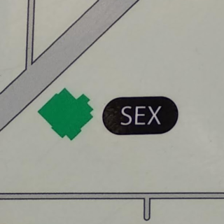 Detail from photo of map of psychiatric hospital in Prague 8-Bohnice, showing the word SEX