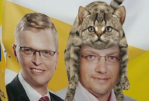 Photo of a Czech politician with a cat on his head