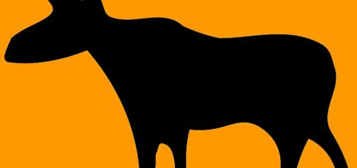 Stumpy Moose logo