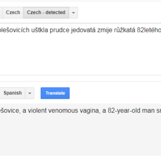 Screenshot of Google Translate